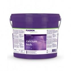 CALCIUM KICK 5 KG. PLAGRON